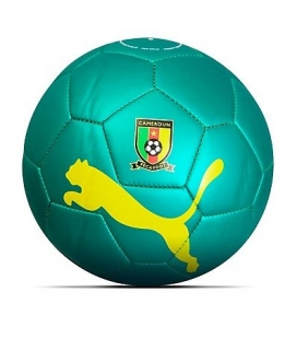 Futbalová lopta Puma Kamerun 2